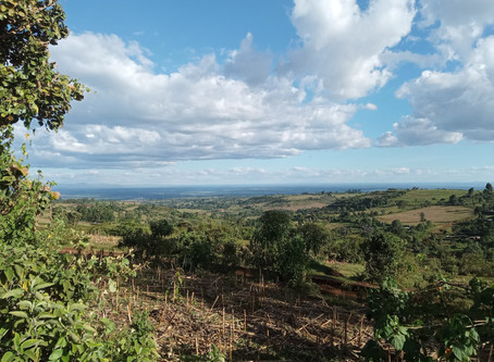 Eneo La Ardhi - Kenya's Landscape