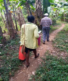 people walking along a path