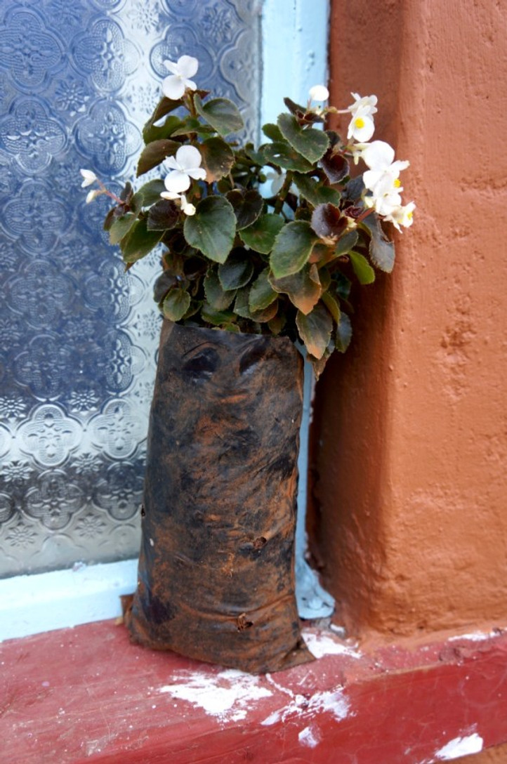 Flowers lovingly placed in the windowsill of a newly constructed home in Eldoret, Kenya.