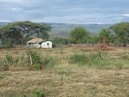 Farming in the dry Kerio Valley