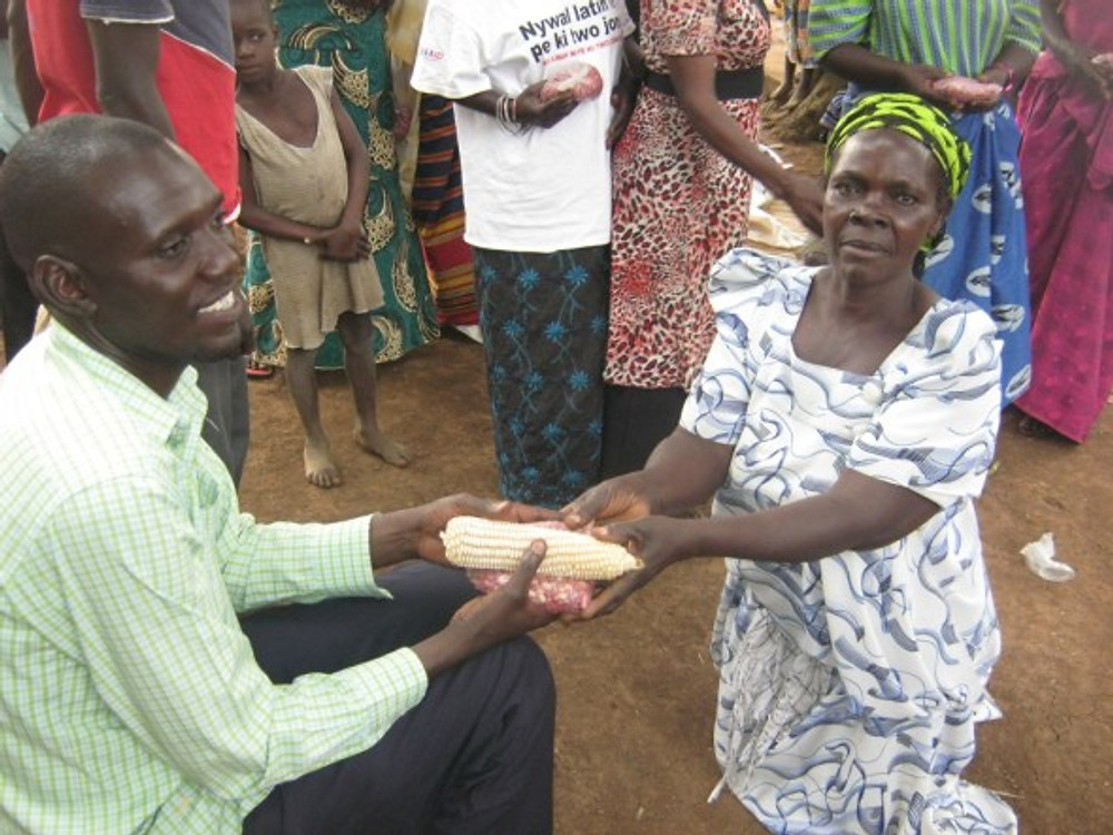 gift of beans and corn in Uganda