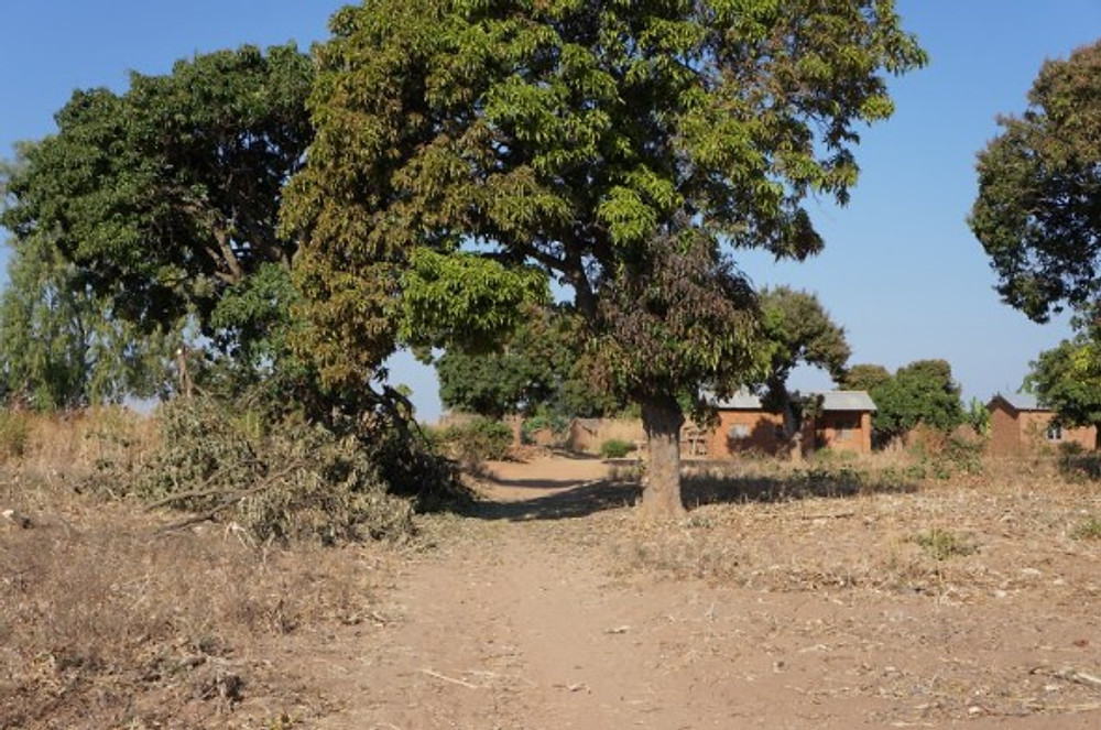 A family compound in rural Malawi.