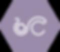 webicoon_service (1).png