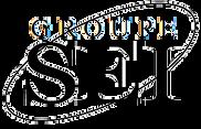 Groupe SEI logo (google).png