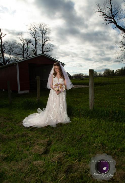 Brittaney Brandt Photography