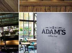 adams-29