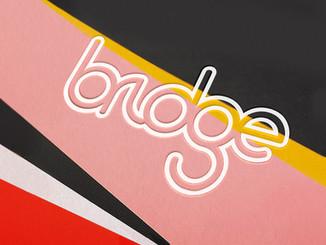 BRIDGE#Software