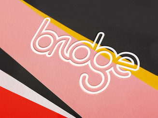 BRIDGE | Software