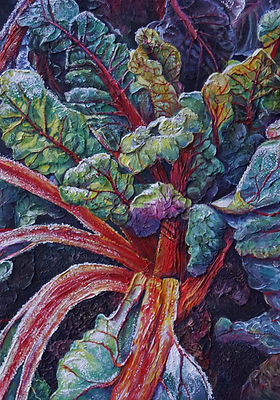 Red chard frost.jpg