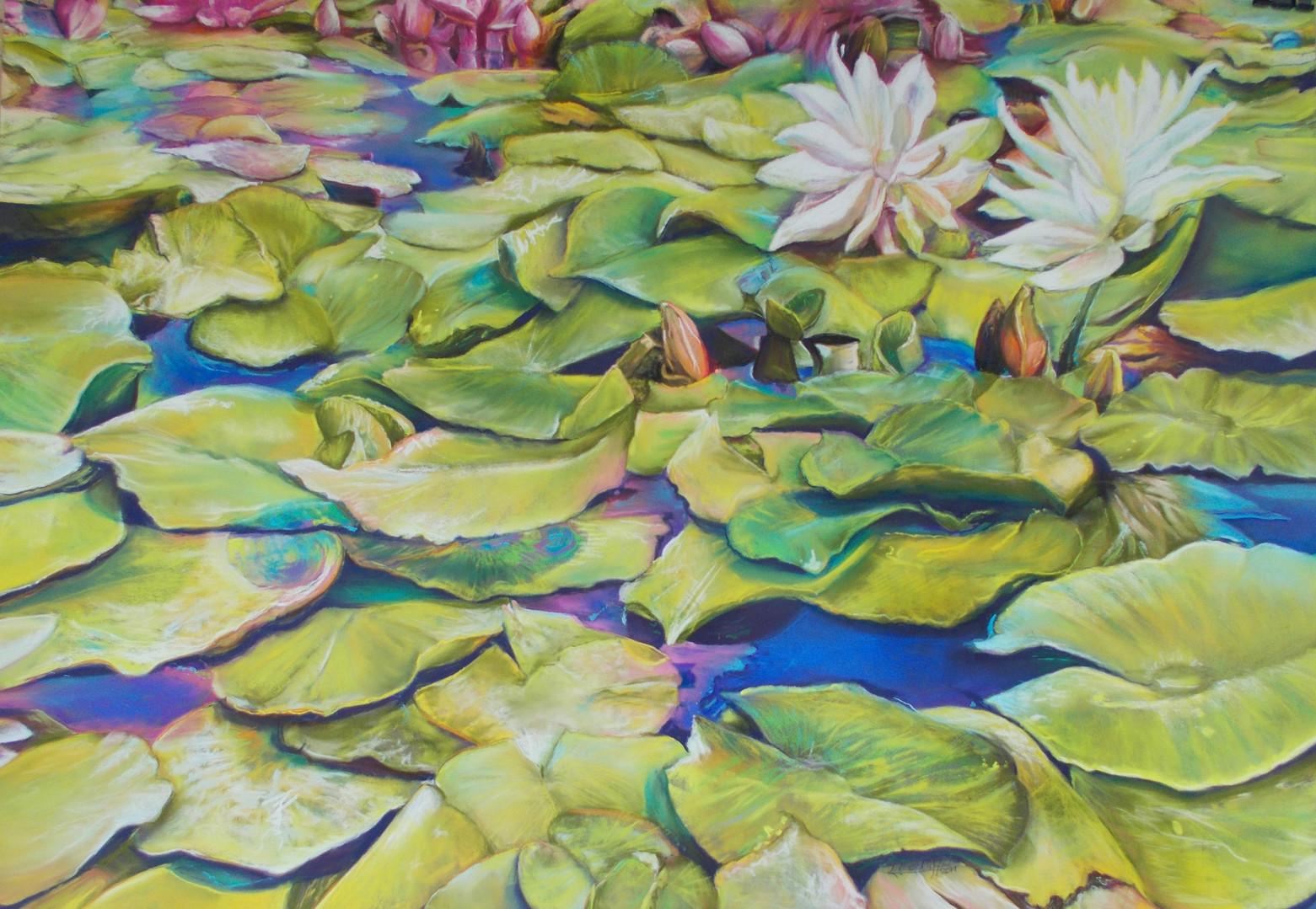 Lily Pond - Soft Pastels ©Denise Cliffen