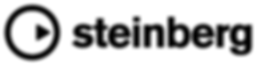 Steinberg logo in black, featuring a black line circle with a small triangle inside.
