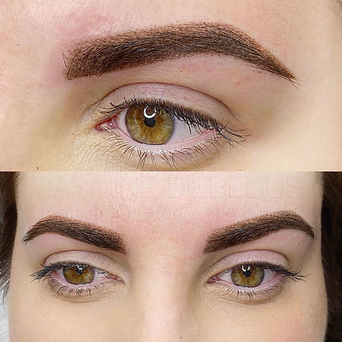 Shading/Ombre Brows