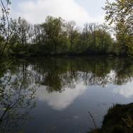 Ruhe am Teich; RS-Fotografie