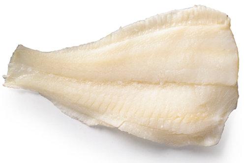 פילה סול הולנדי
