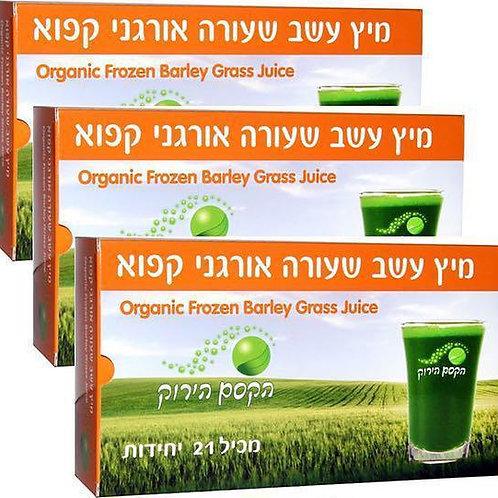 מיץ שעורה אורגני - 21 מנות