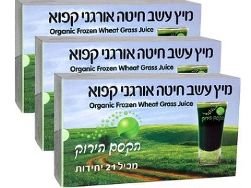 מיץ עשר חיטה אורגני - 21 מנות