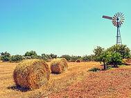 View Farm