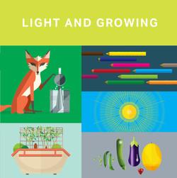 Illuminate_grow_title