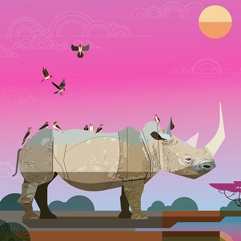 South Western Black Rhino