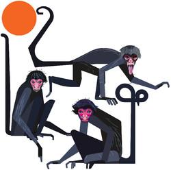 spidermonkeys-nobg