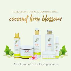 Pure Fiji Coconut Lime Blossom