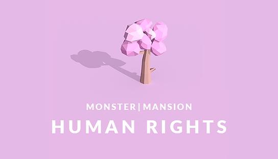 Human Rights Main Capsule Image.png