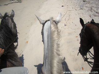 Horse riding lovers in Brazil