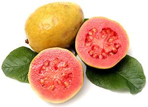 Le Goyavier, ses feuilles, son fruit en cosmétique & en médecine