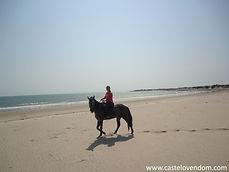 Horse riding Parajuru Brazil Castelo Vendom