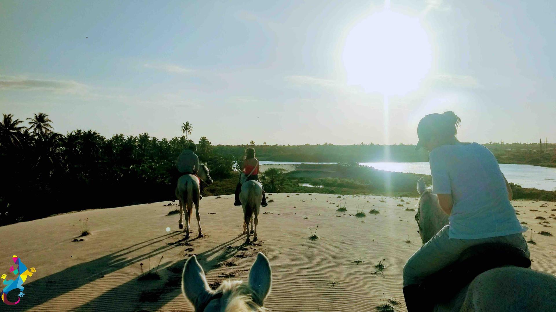 Randonnée à cheval sur la plage, les lagunes et le maquis à Parajuru Brésil avec le Castelo Vendom.