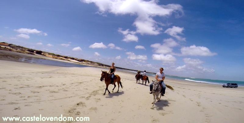 Castelo Vendom Brésil équitation