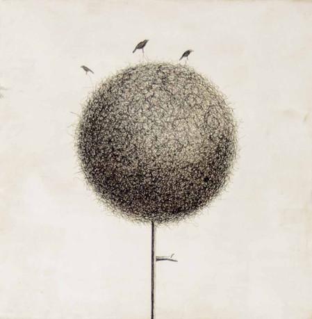 """""""La vista de los pájaros"""""""