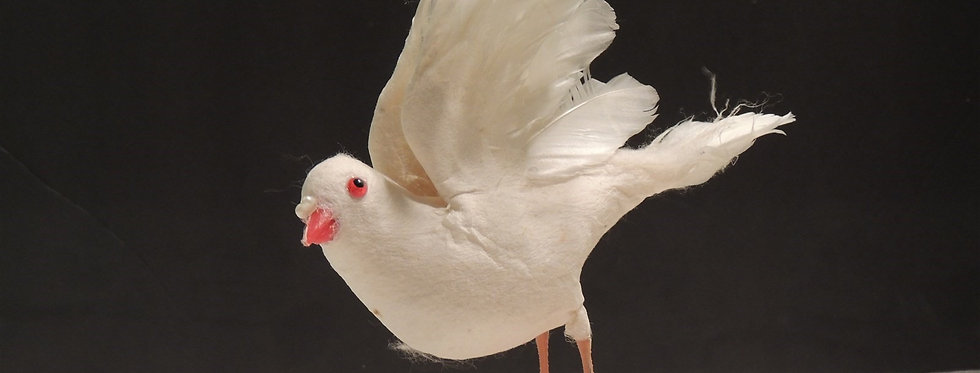 Christmas Ornament - Vintage Feathered White Dove