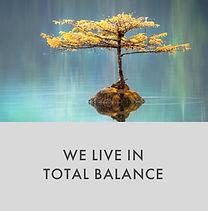 Corevalues_Weliveintotalbalance.jpg