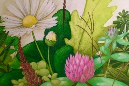 Lucy - Wildflowers.jpeg
