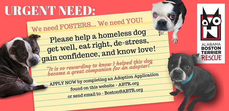 Alabama Boston Terrier Rescue, Inc