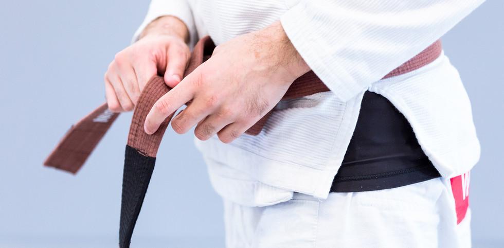 BJJ Brown Belt