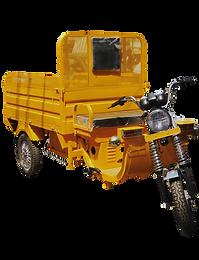 Krishna Loader (Deluxe e-cart)