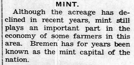 Mint-2.jpg