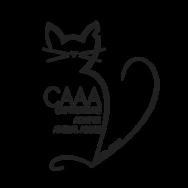 CAAA.png