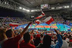 Volleyball Australia.jpg