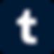 Tumblr_Logos_2018.03.06_iOS Icon Blue.pn