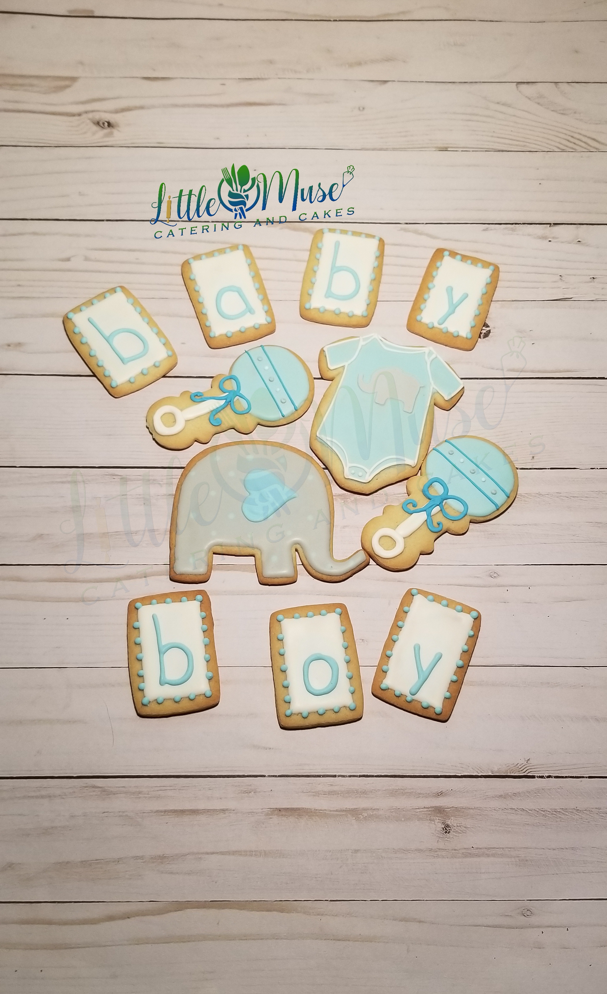 baby elephant shower boy 012619