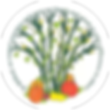willlard_logo.png