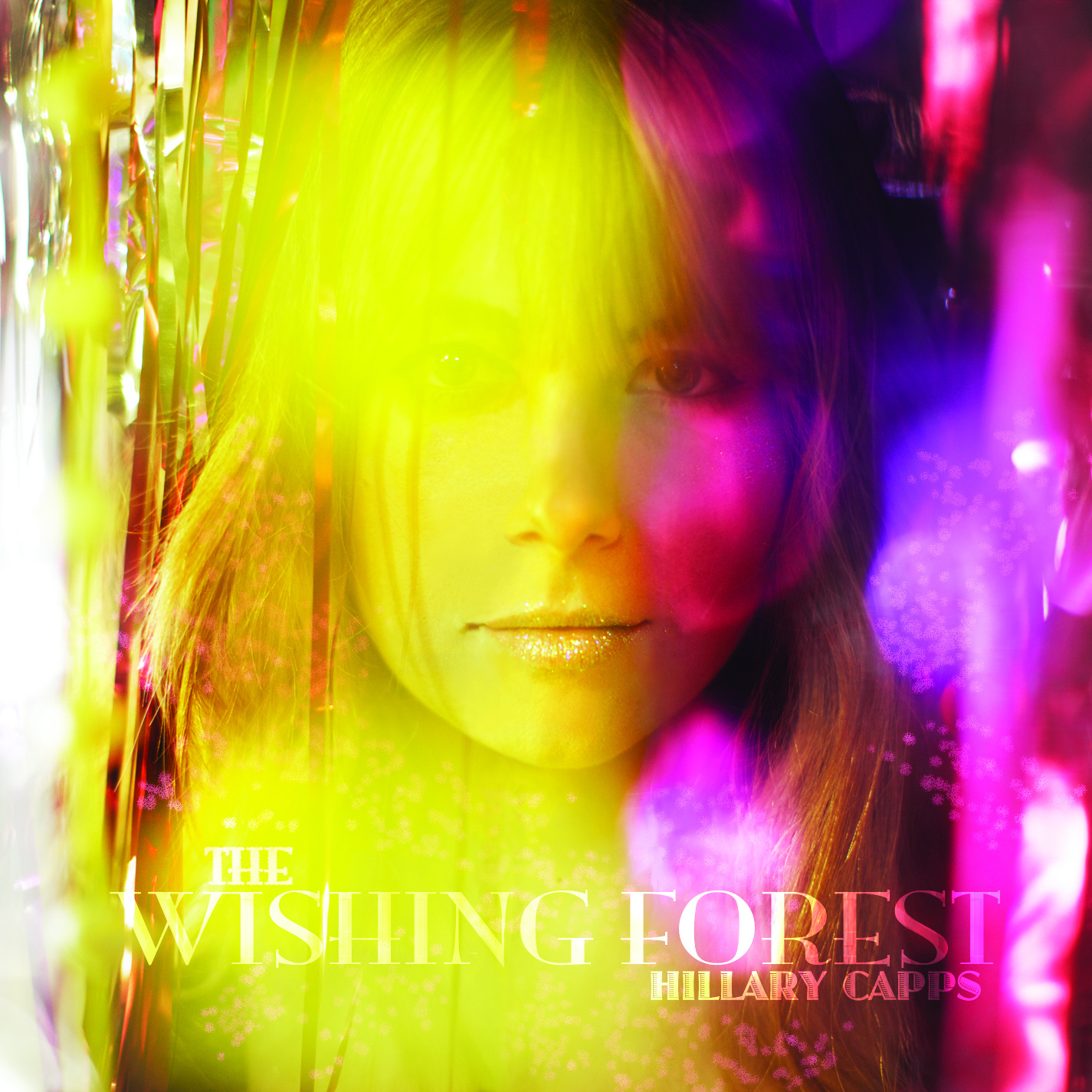 The Wishing Forest album cover
