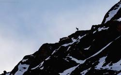 Sa montagne...