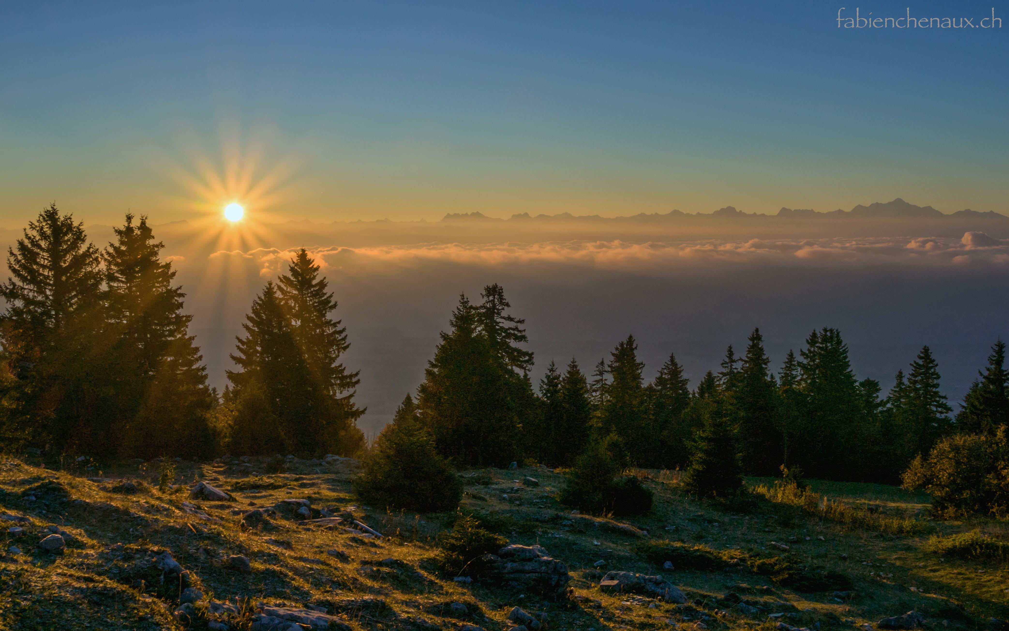 Par un beau matin d'automne...