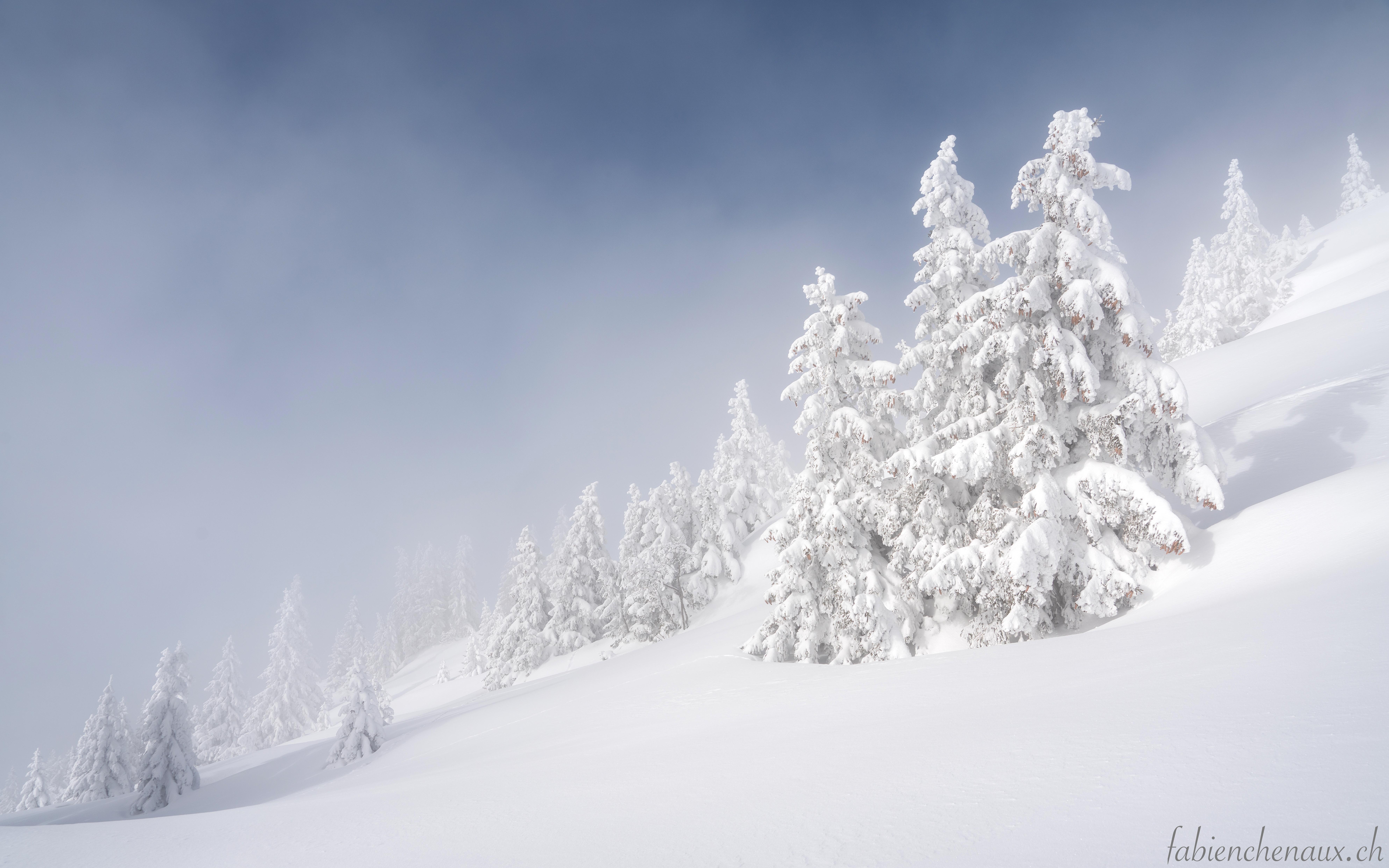 Féerie hivernale...