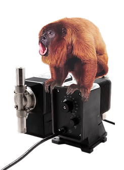 Red-Howler.png