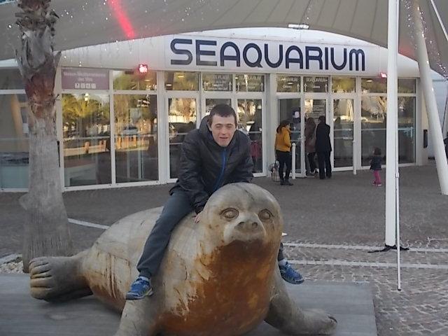 seaquarium grau du roi